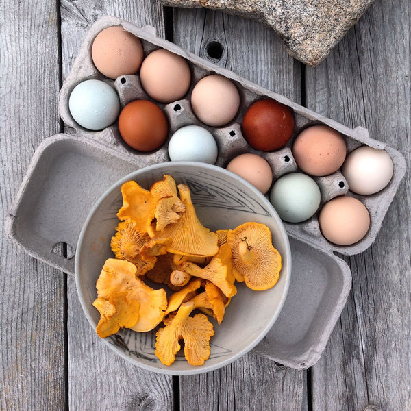 mushrooms-and-eggs.jpg