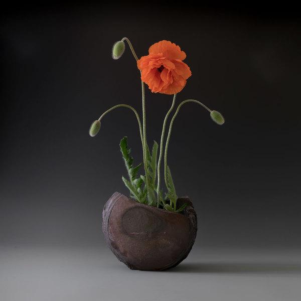 poppies-in-half-moon-1000.jpg