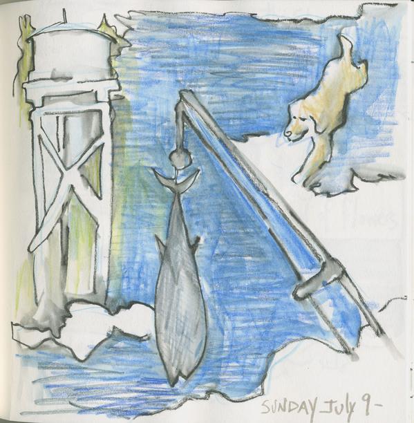 crw-heron island-2017-01.jpg