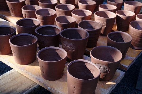 cup-group.jpg