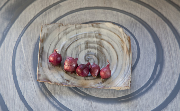 11-red-onions.jpg