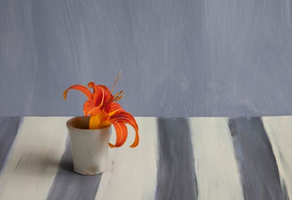 http://catherinewhite.com/rough-ideas/images/13-daylily.jpg