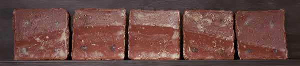 WS-red-horizon-plates.jpg