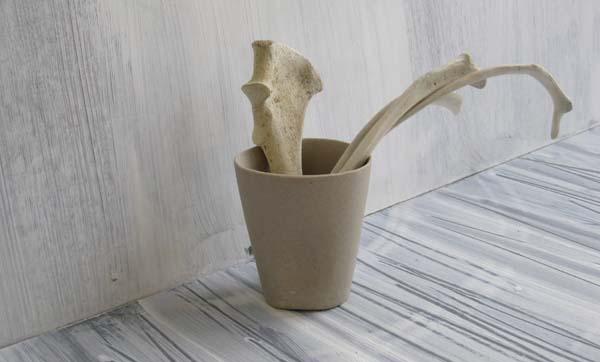 bone cup_2222.jpg
