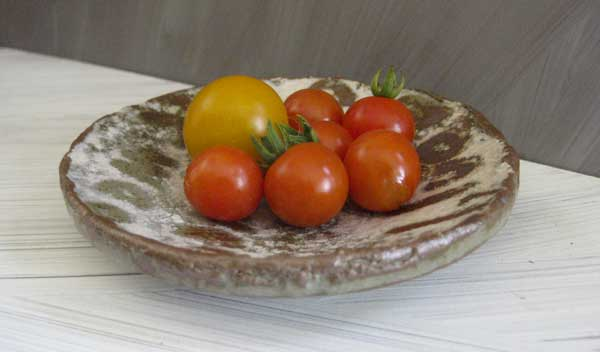 first-tomatoes-2010.jpg