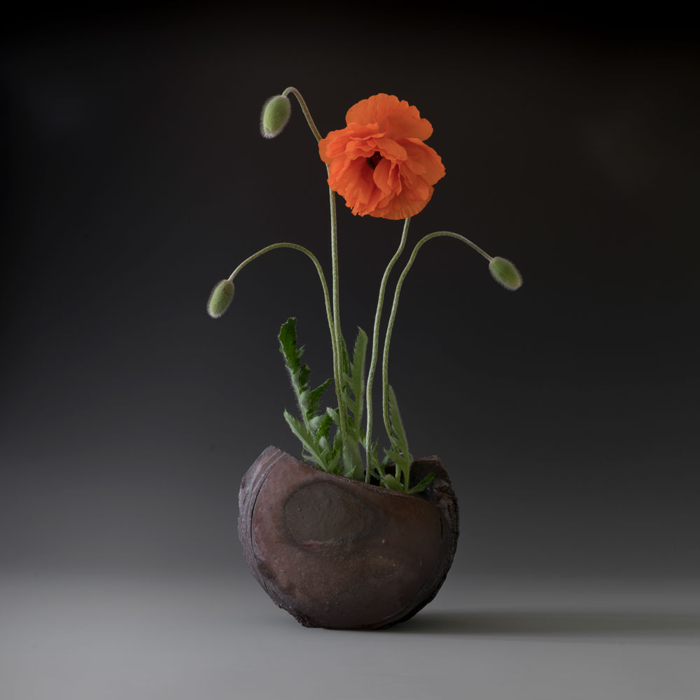 http://catherinewhite.com/rough-ideas/images/poppies-in-half-moon-1000.jpg